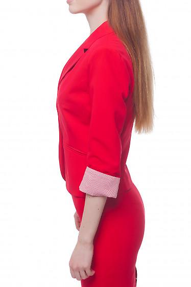 Купить жакет красный с манжетой в полоску Деловая женская одежда фото