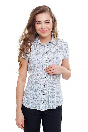 Блузка белая в черные огурцы с защипами Деловая женская одежда фото