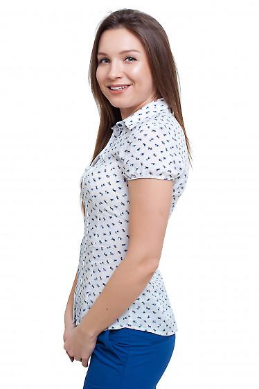 Блузка летняя Деловая женская одежда фото