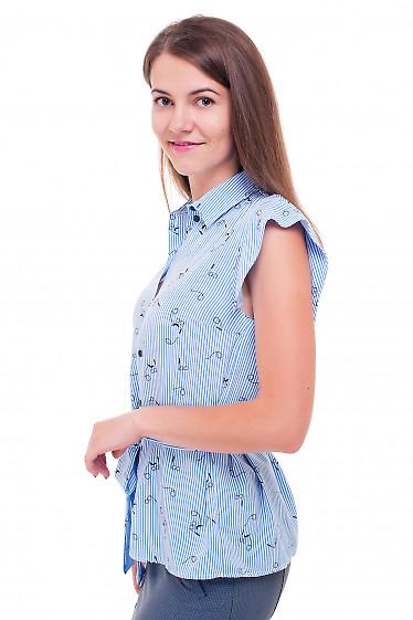 Купить полосатую блузку Деловая женская одежда фото