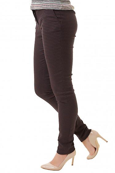 Купить брюки в крупную коричневую лапку Деловая женская одежда фото